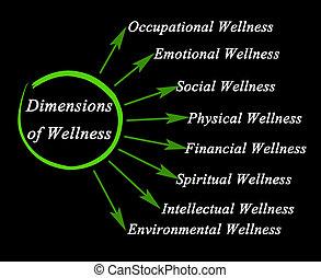 salud, dimensiones