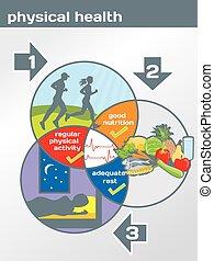 salud física, diagrama