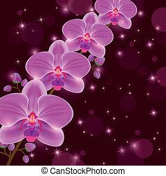 saludo, brillante, invitación, o, tarjeta, orquídea