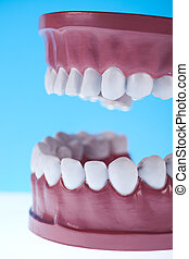 salute dentale, cura, oggetti