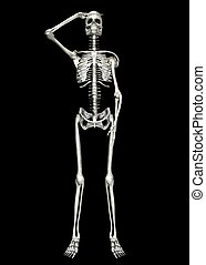Saluting Skeleton - Illustration of a skeleton isolated on a...