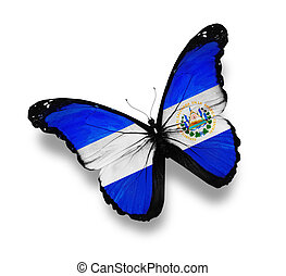 Salvador flag butterfly, isolated on white