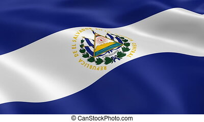 Salvadoran flag in the wind. Part of a series.