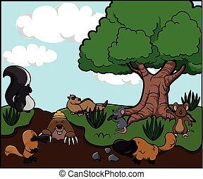 salvaje, bosque, animal
