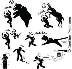 salvaje, doler, atacar, humano, animal