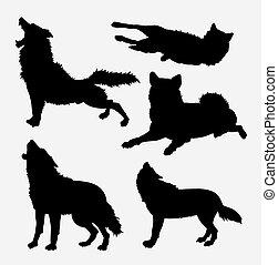 salvaje, lobo, silueta, animal