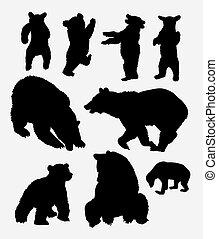 salvaje, silueta, oso, animal