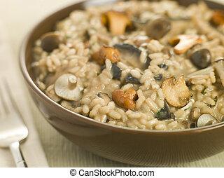 salvaje, tazón, hongo, risotto