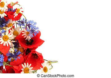 salvaje, verano, flores