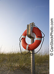 salvavidas, playa.