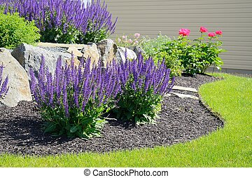 Salvia Flowers and Rock Retaining Wall at a Residential Home