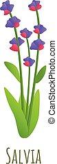 Salvia plant icon, cartoon style - Salvia plant icon. ...