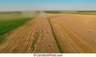 samenvoegen, oogst