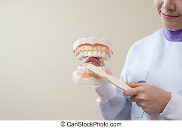 samičí, pacient, s, zubní, kontrola