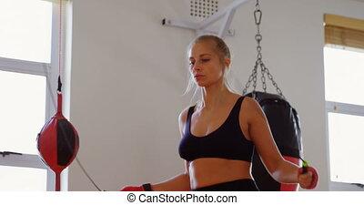 samica, wykonując, bokser, 4k, związać, skaczący, stosowność...