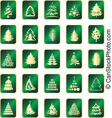 samling, i, fir træ