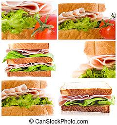samling, sæt, og, sandwicher