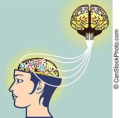 sammanhängande, hjärna, illustration, sekund