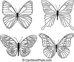 sammlung, vlinders