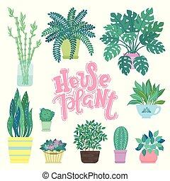 sammlung, von, dekorativ, houseplants, freigestellt, weiß, hintergrund., bündel, von, poppig, betriebe, wachsen, in, töpfe, oder, planters., satz, von, schöne , natürlich, daheim, dekorationen, mit, beschriftung, wort, houseplant.
