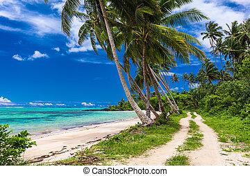 samoa, wyspa, drzewa, tropikalny, dłoń plaża, droga