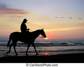samotny, jeździec