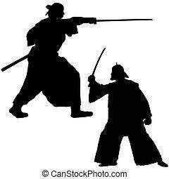 samouraï, combattant, deux