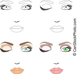 Samples of woman face scheme for makeup application. Eps 10