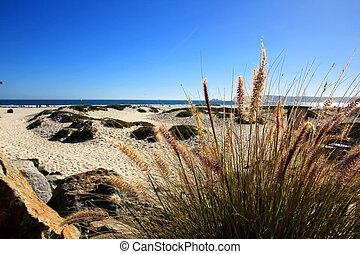 San Diego Beach - The San Diego Beach, Coronado Island on a...