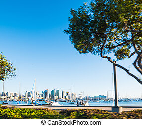 San Diego seafront on a clear day