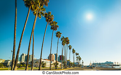 San Diego seafront on a sunny day