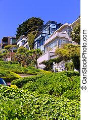 San Francisco Lombard Street gardens California