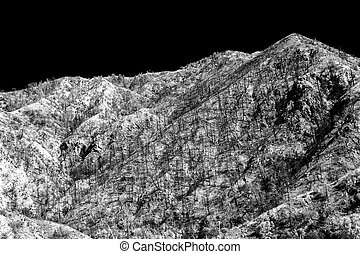 San Gabriel Mountains Following the Station Fire