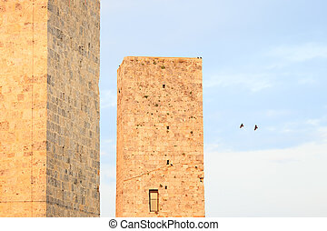 San Gimignano landmark medieval town, Tuscany, Italy, Europe. Two towers detail with two birds flying and others on lower tower.