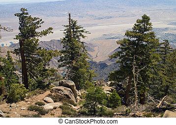 San Jacinto View