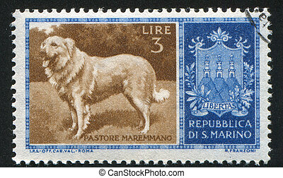 Sheep dog - SAN MARINO - CIRCA 1956: stamp printed by San ...