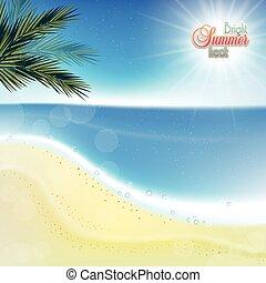 sand., 抽象的, 白い背景, 海