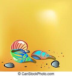 sand., 明るい, ベクトル, イラスト, 殻