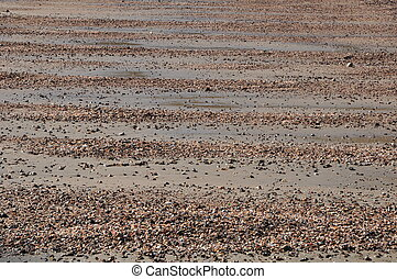 sand and shell wave