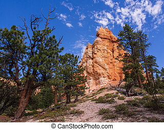 Sand and Stone Formations with Blue Sky and Green Trees in Bryce Canyon National Park, Utah, USA