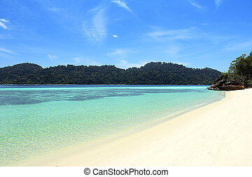 Sand and water. - Sand, blue water, green trees on the...