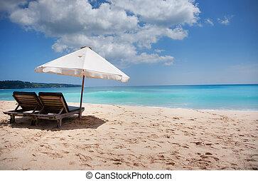 Beautiful surfing sand beach on sunny summer day