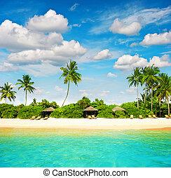 Sand beach. Blue sky. Paradise island palm trees
