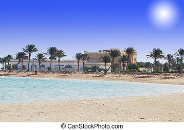 sand beach with sea and palms in Egypt