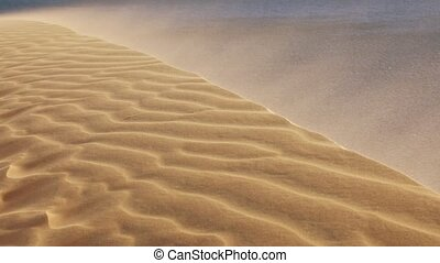 Sand blowing over the dunes in the desert - Stormy wind ...