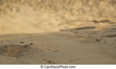Sand boarding Beach Sand, Qld Island, Australia
