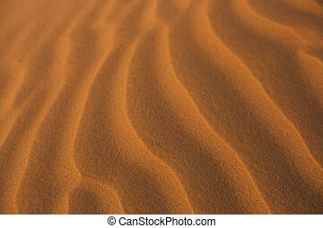 sand close-up in the desert