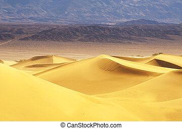 Sand Desert