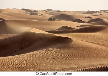 sand dune in desert