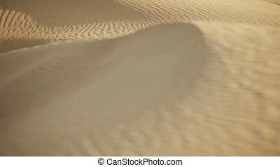 Sand dune in the desert